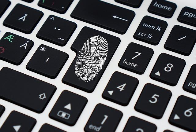 ciberdelincuencia 4 tipos de delitos informaticos
